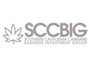 SCCBIG (Website grey)